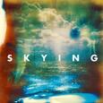 the horrors skying album artwork